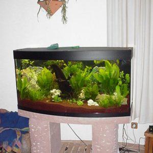 Aquarien-Set`s