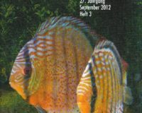 Diskusbrief 2012/3
