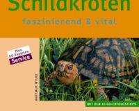 Schildkröten fastinierend & vital