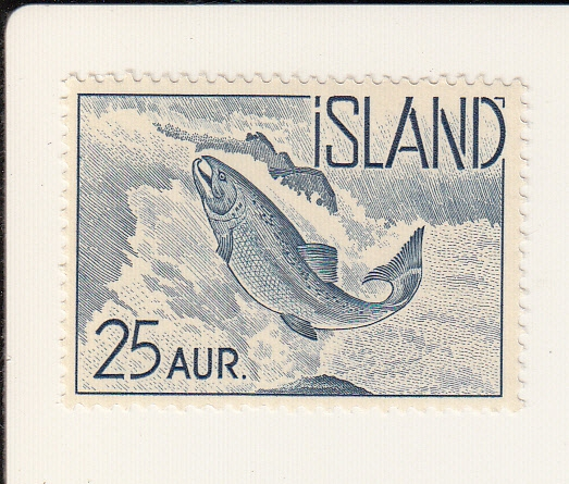Atlantik-Lachs (Salmosalar)