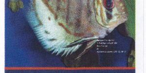 Briefmarke RegioPost-Pfalz 140 Cent  (2.Auflage)