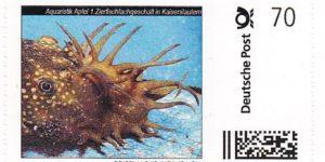 AA-Briefmarke 0,70 € Deutsche Post Individuell Antennenwels