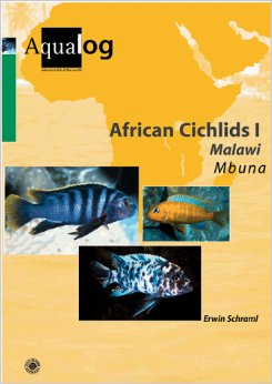 Africa Cichlids I