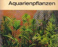 Aquarienpflanzen