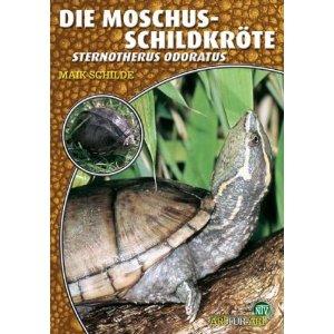 Die Moschus-Schildkröte von Maik Schilde