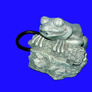 Laguna Speier sitzender Frosch