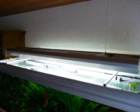 Leuchtstoffröhren für Meerwasser