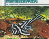 Harnischwelse