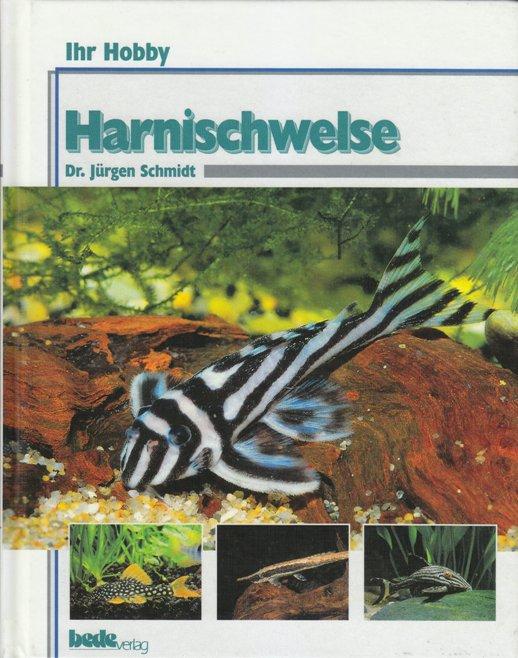 Harnischwelse