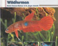 Kampffische Wildformen