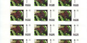 AA-Briefmarke 20 x 0,85 €  Deutsche Post Individuell Wabenschilderwels