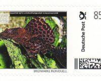 AA-Briefmarke 0,85 €  Deutsche Post Individuell Wabenschilderwels