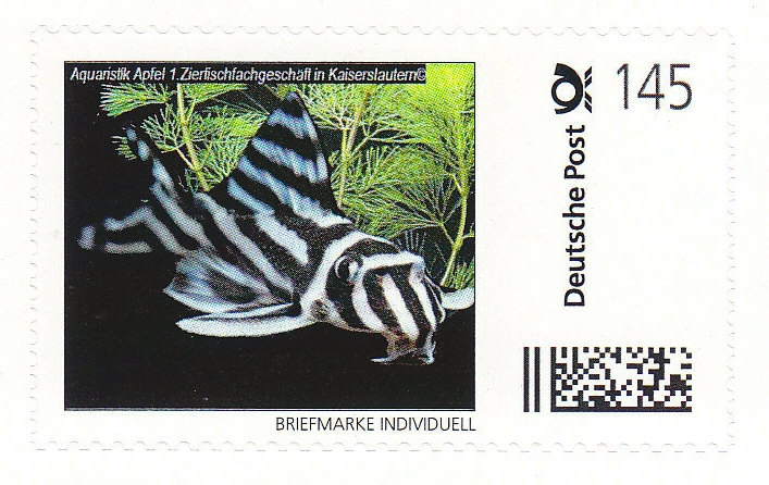 AA-Briefmarke 1,45 €  Deutsche Post Individuell Zebrawels