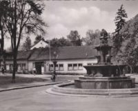 Ansicht Kaiserslautern der Schweinsbrunnen am Waldschlösschen vor 1958