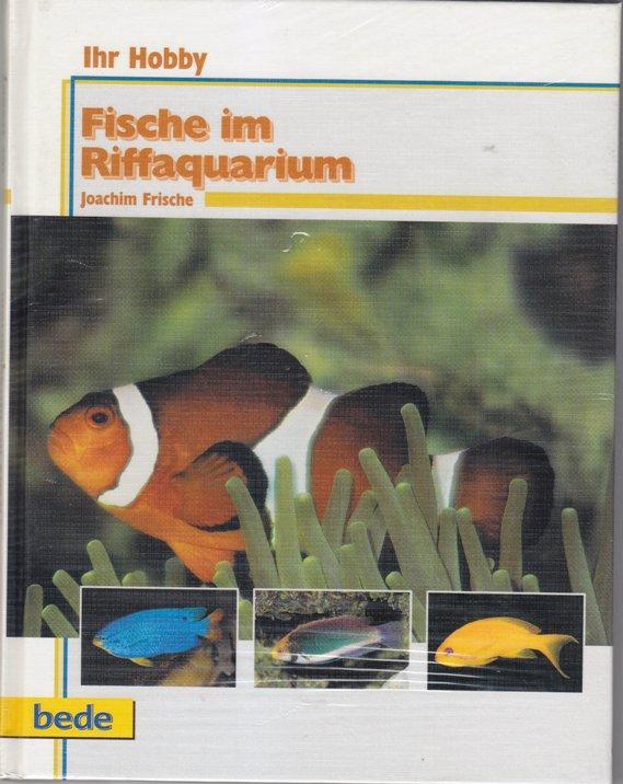 Fische im Riffaquarium