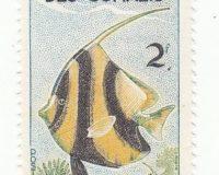 Wimpel Falterfisch (Heniochus acuminatus)
