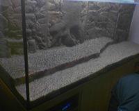 Dennerle Terrassensteine im 800 Liter Aquarium