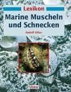 Marine Muscheln und Schnecken, gebrauchtes Exemplar