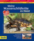 Meine Wasserschildkröte zu Hause