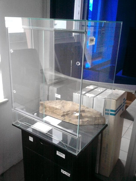 Hochterrarium 60x50x80 cm