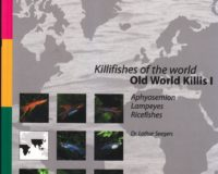 Old World Killis I
