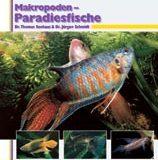 Makropoden-Paradiesfische