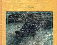Tanganjika-Cichliden in ihrem natürlichen Lebensraum