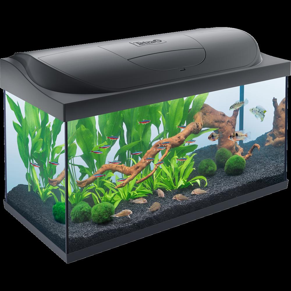 Tetra StarterLine Aquarium schwarz 105 Liter
