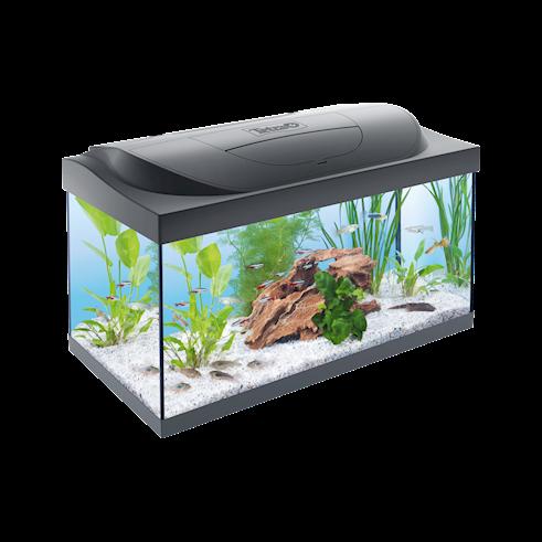 Tetra Kaltwasser-Aquarium schwarz 54 Liter