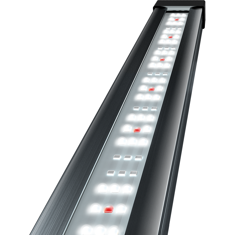Tetronic LED ProLine 580 mm