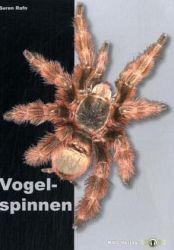 Vogelspinnen von Sören Rafn