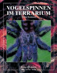 Vogelspinnen im Terrarium von Martin Meinhardt