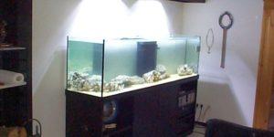 Aquarienkombinationen Meerwasser
