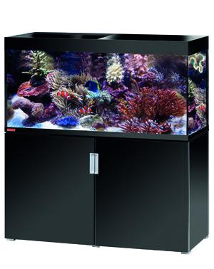 Aquaristik Meerwasser