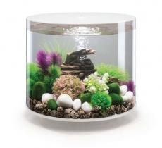 biOrb - Aquarien